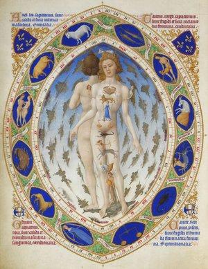 Limbourg_Anatomical_Man