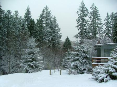 Snow12-18-08aSm