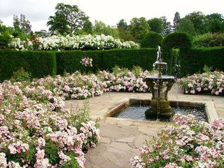 800px-Hever_Castle_rose_garden_with_fountain