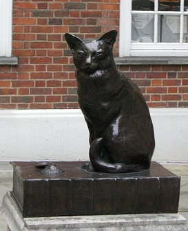 Hodge the Cat 2