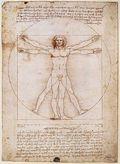 Da Vinci_Vitruvian