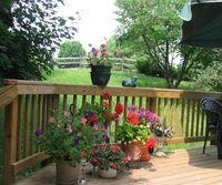 Deck_summer