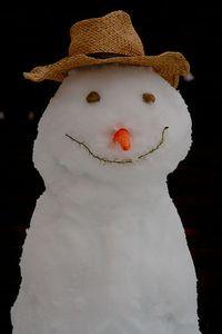 Weatherly snowman wiki