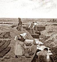 Denmark peat digging