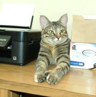 DeskMonitor-sm