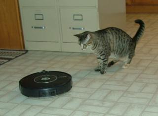 RoombaSparky4sm