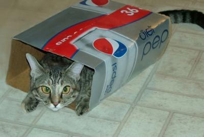Pepsi-4sm