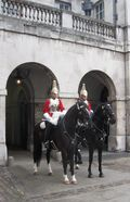 Horse Guards 2