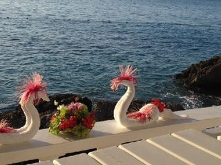 Sea Swans