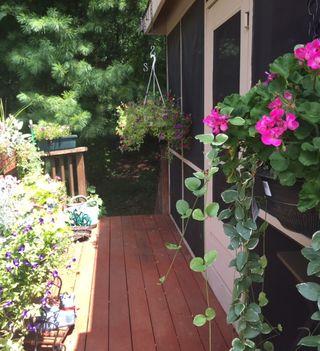 Deck flowers