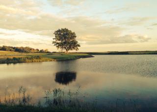 Andrea--golfcourse