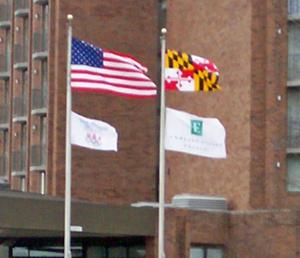 US&MarylandFlag