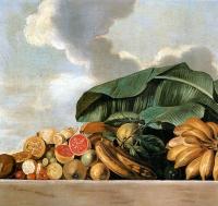 Albert_Eckhout_-_Bananas _goiaba_e_outras_frutas