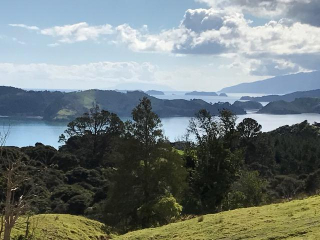Anne New Zealand photo