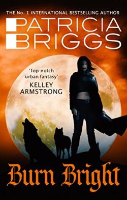 BriggsBurnBright