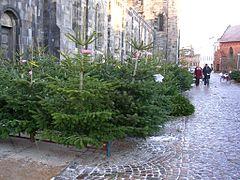 Julgransförsäljning_utanför_Lunds_domkyrka