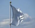 UndiesFlagpole