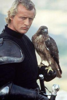 Ladyhawke hawk