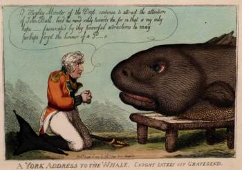 A+York+addresses+a+whale