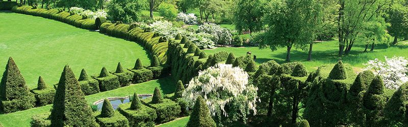 The Magic Of Ladew Topiary Gardens