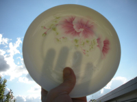 Demonstration of the translucent quality of porcelain
