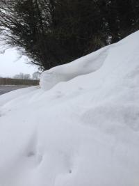 Snowdrift 2