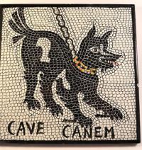 Ccd dog pompeii 2nd century bce3