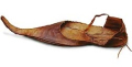 Medieval pointed shoe