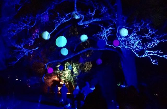 Lightshow 2