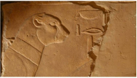 Cheeta Temple of Hatshepsut Deir el-Bahari. attjadwigaIwaszczuk