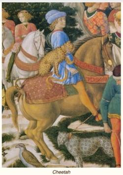 Medieval cheetah