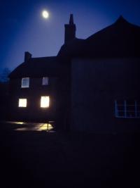 Moonlit thatch