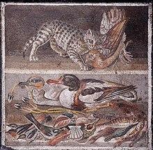220px-Cat_birds_MAN_Napoli_Inv9993