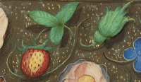 Medieval strawberry
