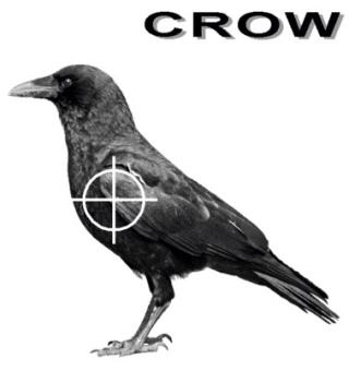 ShootCrow