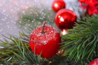 Christmas-tree-5764072_1280