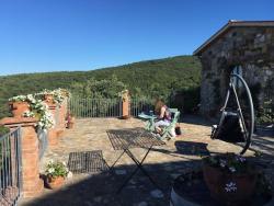 Sue working on terrace web