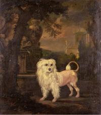 A Lowchen By A Fountain Jan Wyck before 1702