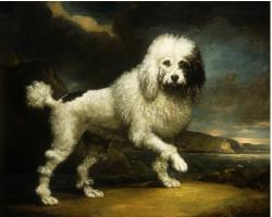 Northcote  James (1746-1831). A Standard Poodle in a Coastal Landscape 1806.