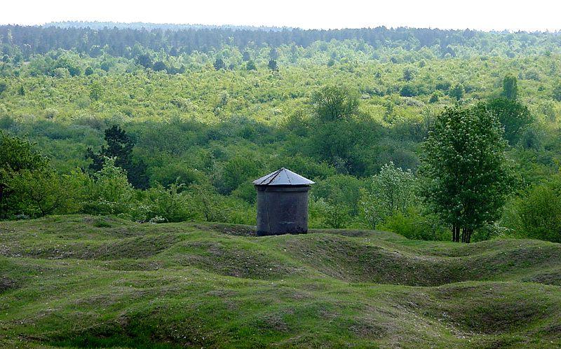 Landscape_in_Verdun_Forest