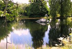 Nessie - Paul Hermans Wikimedia Commons