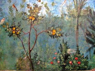 Trees in garden house of livia rome 39 bce
