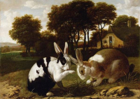 Two-rabbits-in-a-landscape-c1650-haarlem-school
