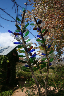 Bottle Tree by The Rocketeer is licensed under CC BYNCND 2.0