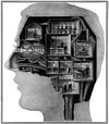 Brain_rooms