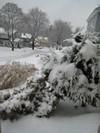 Snow_scene_3