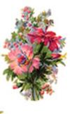 Bouquet_for_pat