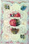 Valentinewhitney